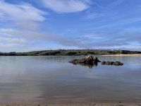 Navegando en la ría de Mogro