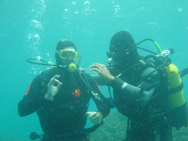 Buceo con instructor experto