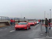 Ferraris en fila
