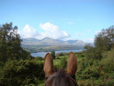 2h multiadventure celebration and pony ride