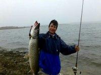 从岸边钓鱼