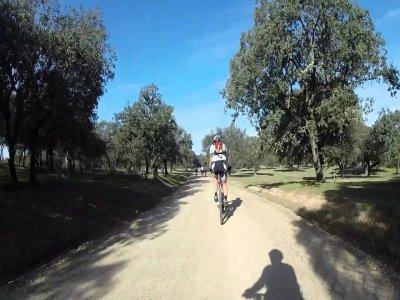 Tres Rutas en BTT por la provincia de Cádiz