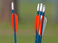There are different types of arrow