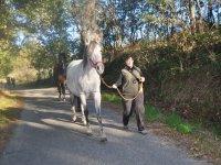 caminos con caballos