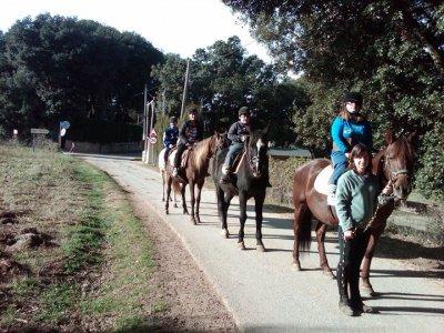 Ruta a caballo por Pla de Martís durante 1 hora
