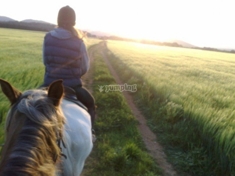 Visita i posti migliori a cavallo