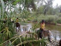 Rio Ser Valley山谷有2小时的骑马游览活动