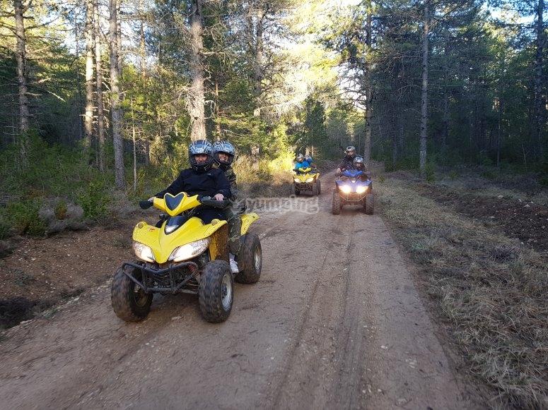Quad sulle strade forestali