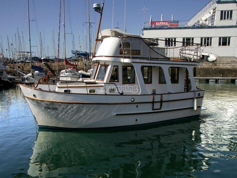 Yacht Captain