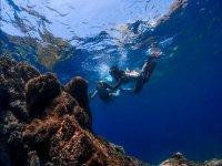 Snorkel en Las Galletas
