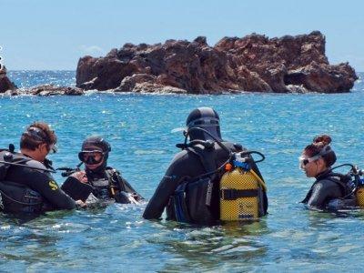 Battesimo di immersioni a Puerto del Carmen, 2 ore