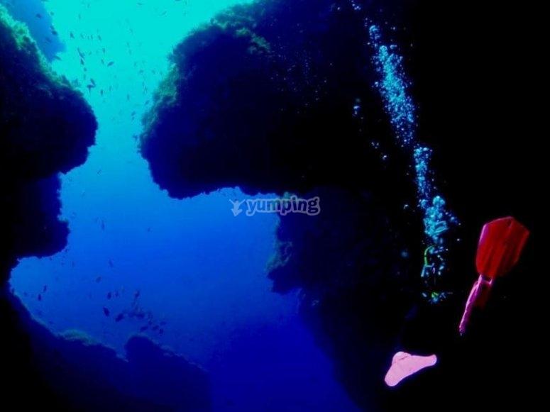 在圣安东尼奥潜水