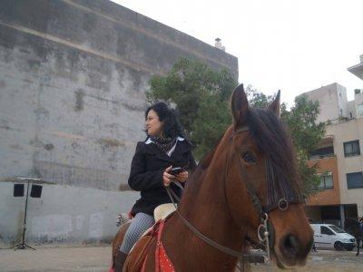 在Costa Blanca骑马游览3小时
