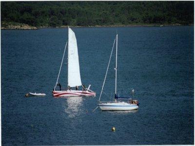 Paseo en catamarán desde Fornells, adulto, 4 horas