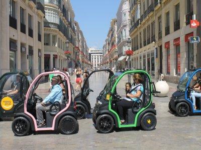 Visita guidata in auto elettrica a Malaga