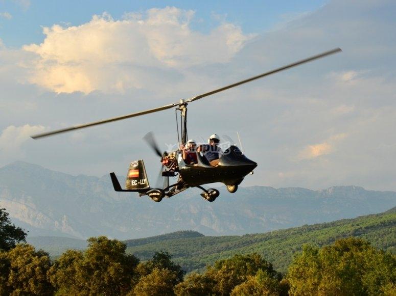 Volando sobre los bosques en ultraligero
