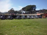 Parked buggies before departing