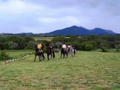骑马类和马路在Serinya 1h