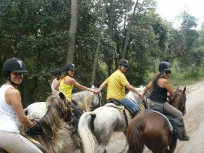 1h Horse Riding Lesson + Horse Trip in Serinya