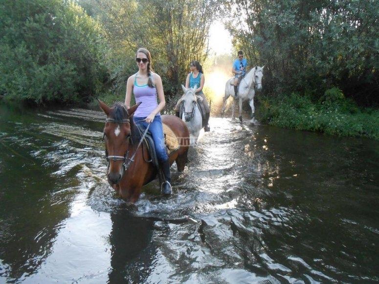Accediendo al Tormes con los caballos