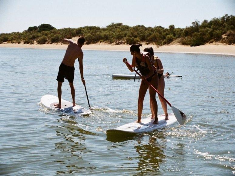 Grupo en paddle surf