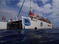 Sail Catamaran Cruise, Port d'Alcúdia, Kids Fee