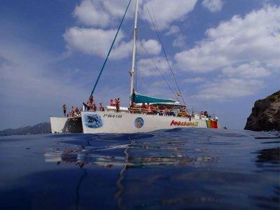 双体船前往Formentor海滩,成人