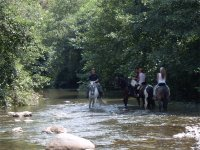 Crossing the river on horses