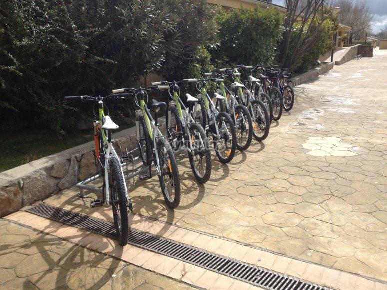 Flota de bicicletas