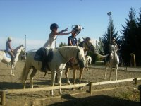 Horse riding activities