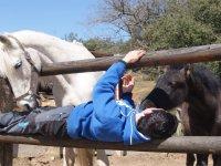 Diversion con los caballos