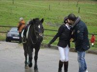 Romance con los caballos