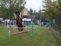 Saltos a caballo en el campamento