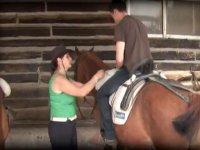 arrampicandosi sul cavallo