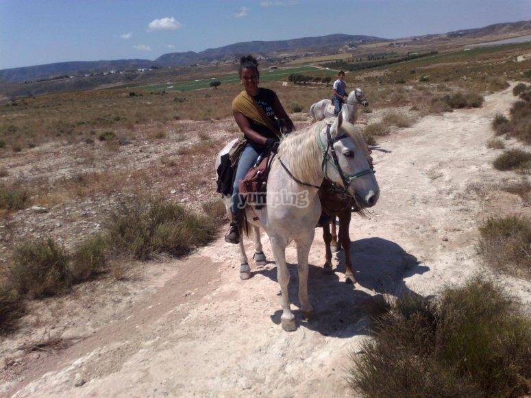 De ruta con caballo blanco