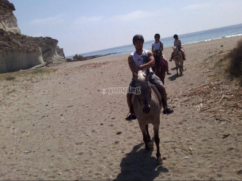 在马背上从海滩回来
