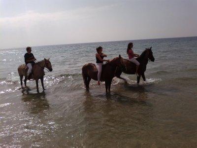 Ruta a caballo por Agua Amarga, 2 horas