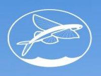 Fun&fish charters Pesca