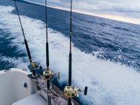 Pesca desde barco en aguas del Mediterráneo