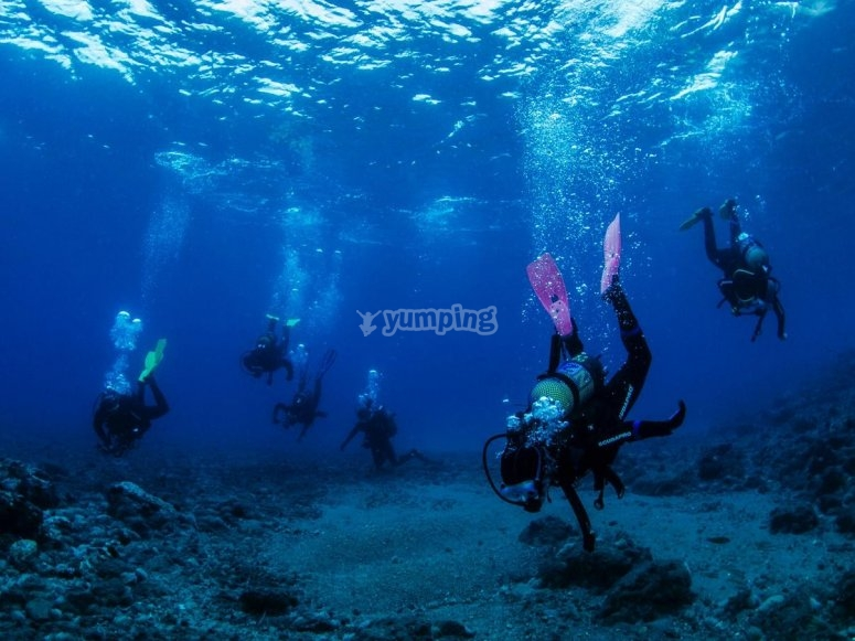 潜水组--999-潜水夫妇