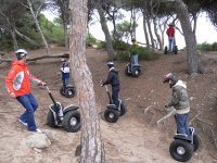 Segway in the forest