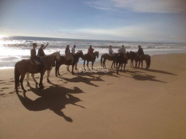 Viendo la playa en caballo
