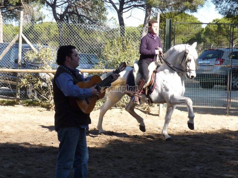 caballo y guitarra en el campo