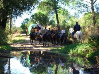 Camino del Rocío per gruppi a tempo pieno