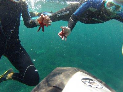 在Cala'n Bosch Menorca海滩浮潜1小时
