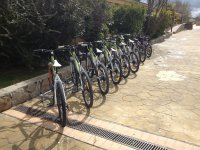 El Escorial的自行车租赁服务,3小时