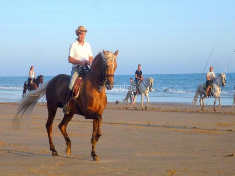 在沙滩上骑