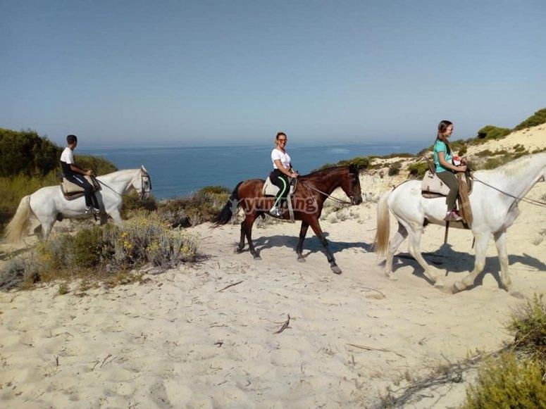 马萨贡的骑马场