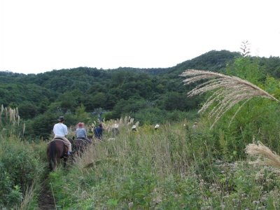 Ruta a caballo y tiro con arco, El Boalo, 2 horas