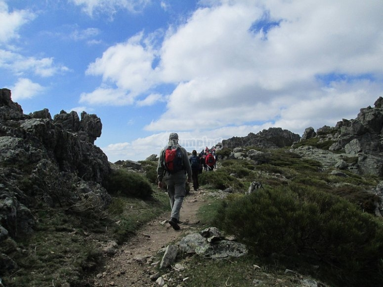 峡谷到山顶-99- barranca ladera